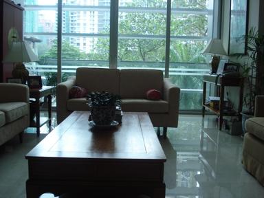 Livingroomluke